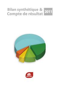 Bilan synthétique et compte de résultat 2011