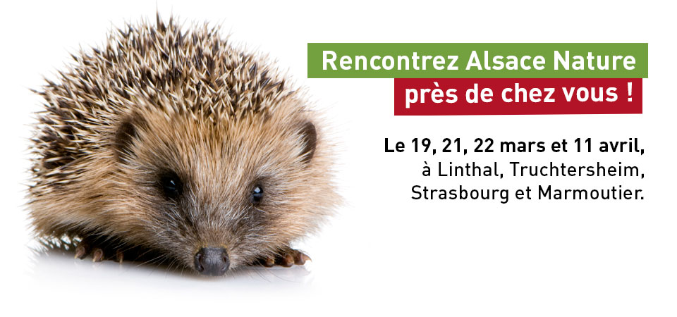 Rencontrez Alsace Nature près de chez vous !
