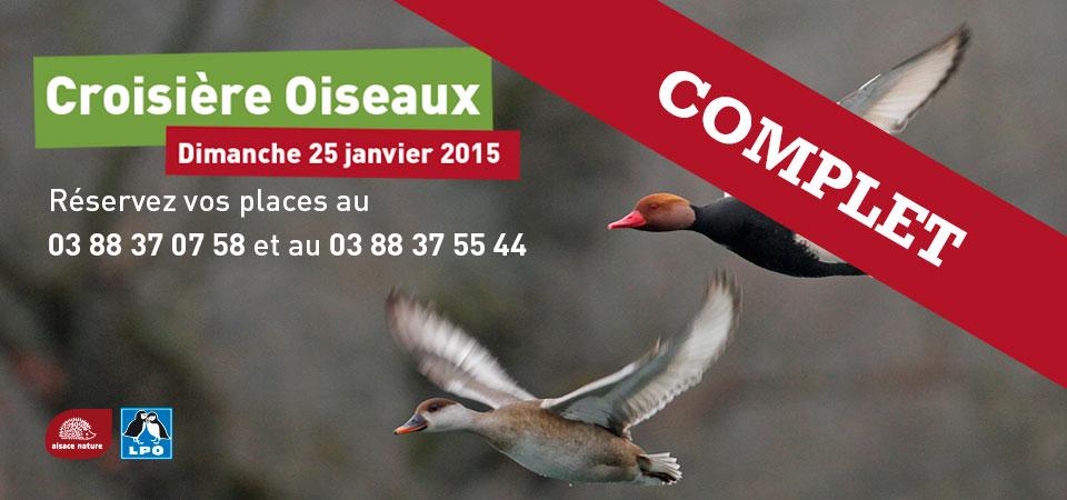 Croisière Oiseaux 2015 – COMPLET