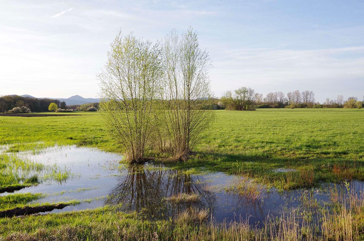 [Consultation] Appel à la mobilisation citoyenne contre la pollution de nos eaux souterraines par les pesticides