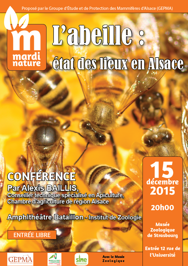 [Conférence Nature] 15 déc. 2015 :  L'abeille, état des lieux en Alsace