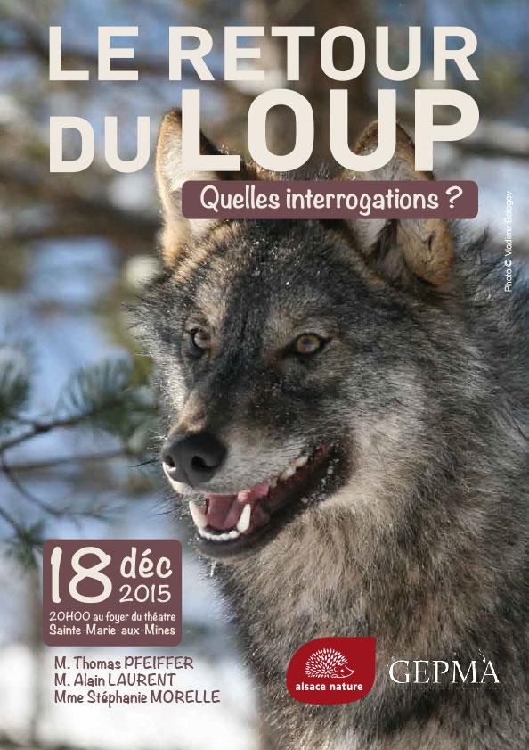[Soirée-débat] Le retour du loup : quelles interrogations ?