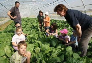 Enfants-aux-Jardins-du-Trefle-Rouge-web