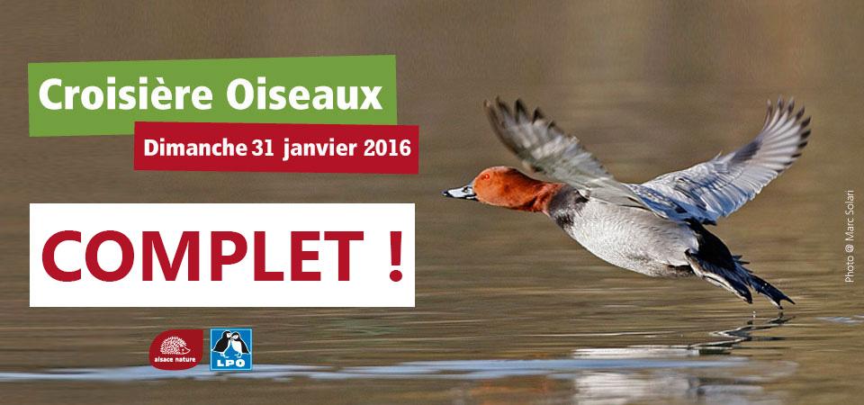 Croisière oiseaux 2016 : c'est complet !