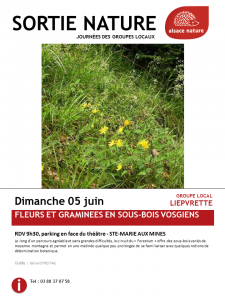 160605-Affiche-sortie-GL-Liepvrette