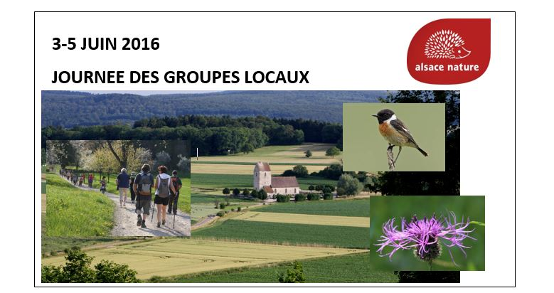 Du 3 au 5 juin : Journées des groupes locaux d'Alsace Nature, venez rencontrer Alsace Nature près de chez vous …