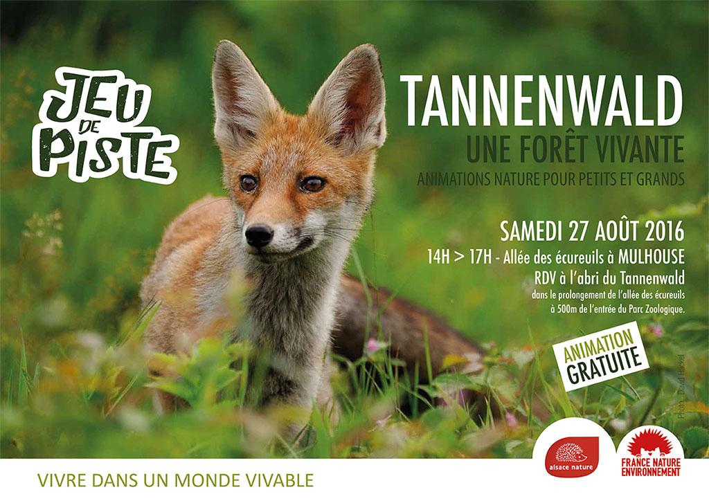 160827-tannenwald