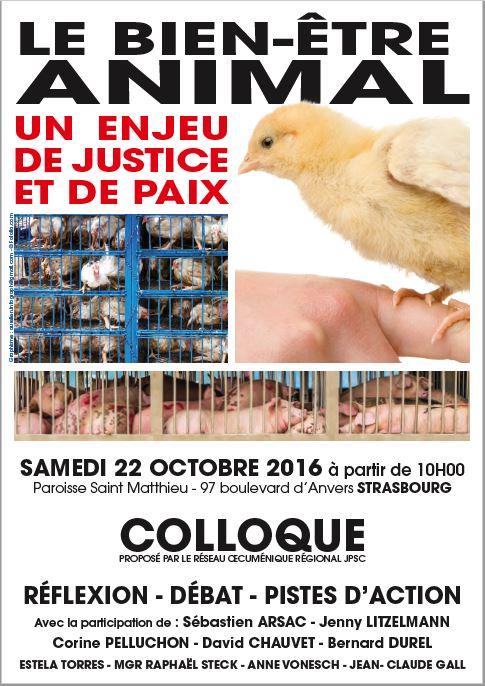 """[Revue de presse] Succès du colloque """"Le bien-être animal, un enjeu de justice et de paix"""""""