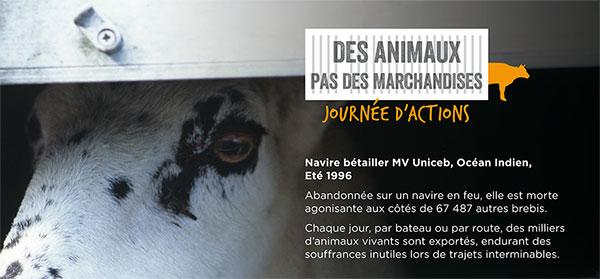 animaux-pas-marchandises-2