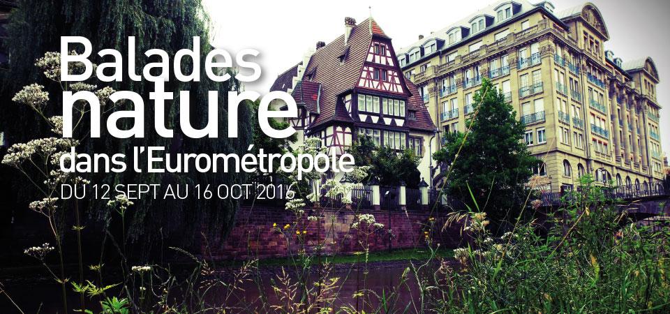 [Sorties nature] Balades nature dans l'Eurométropole
