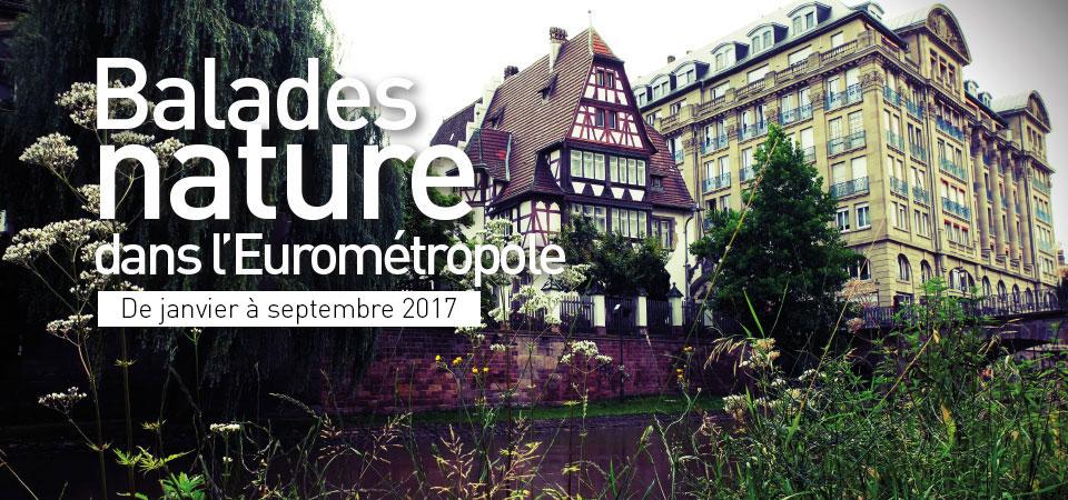 [Sorties nature] Les balades nature dans l'Eurométropole 2017