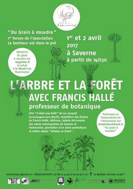 L'arbre et la forêt avec Francis Hallé