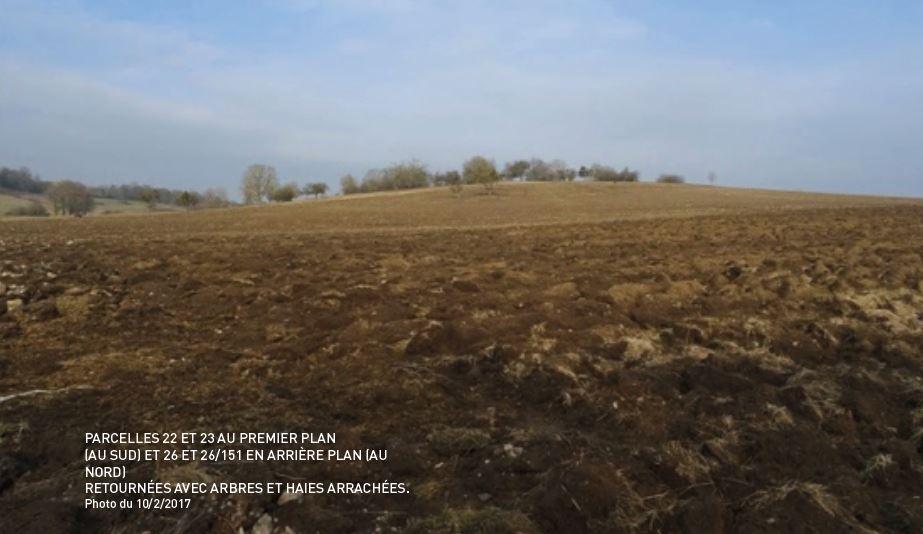 Alsace Bossue : les associations dénoncent des destructions illégales de milieux naturels