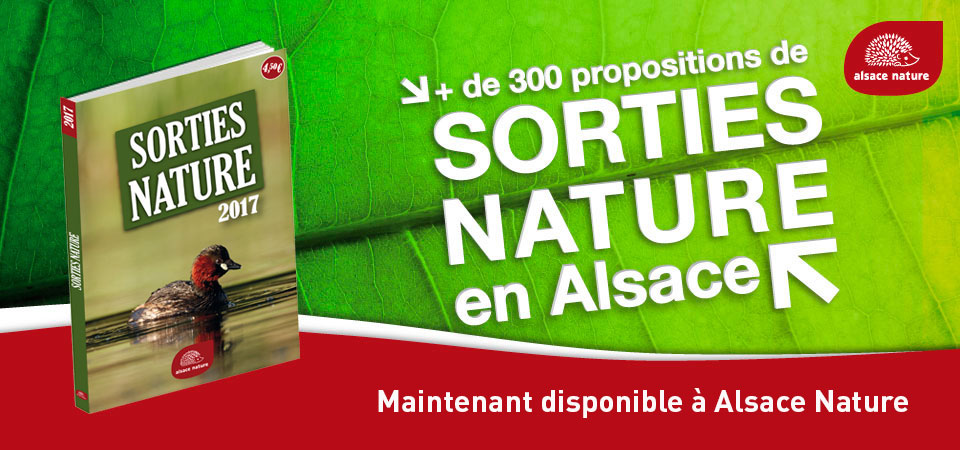 Sorties Nature 2017 – MAINTENANT DISPONIBLE !