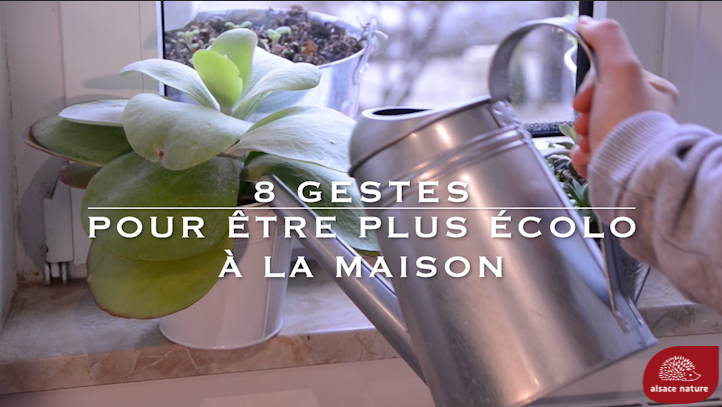 [Vidéo] Les gestes écolos à la maison