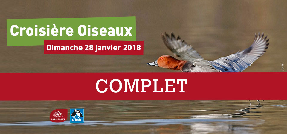 [Evénement] Croisière oiseaux 2018 : les inscriptions sont closes