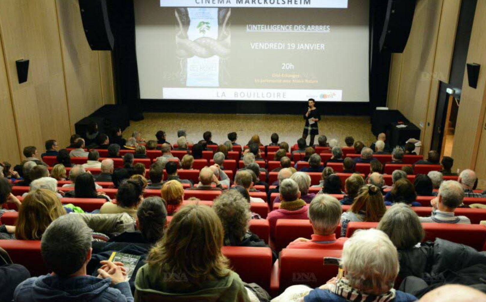 """Marckolsheim : franc succès pour """"L'intelligence des arbres et La vie secrète des plantes"""""""