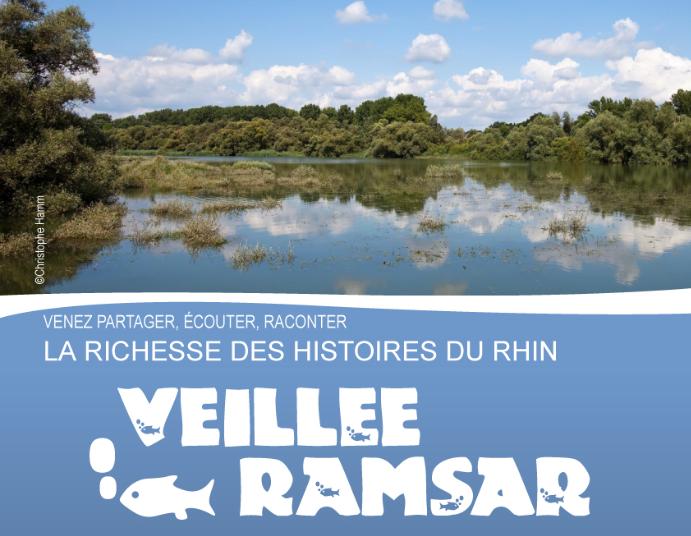 Journée Mondiale des Zones humides – soirée Ramsar à Rhinau
