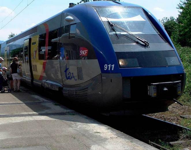 [Communiqué de presse] Fermeture de la ligne train Sélestat-Lièpvre : une erreur pour Alsace Nature
