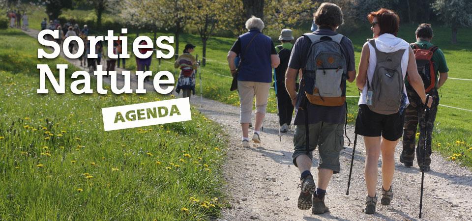 Retrouvez l'agenda des Sorties Nature