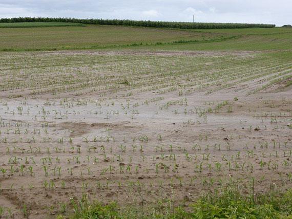 [Communiqué de presse] Coulées de boues : des catastrophes naturelles ?
