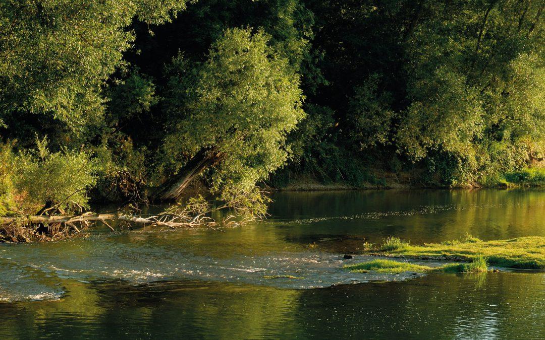 Balade nature dans l'Eurométropole : entre Bruche et canal