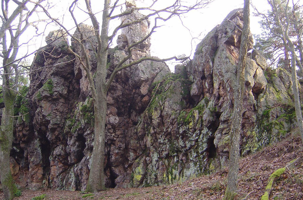 """Ballade géologique autour du """"Schlussenstein"""" à Bergheim"""