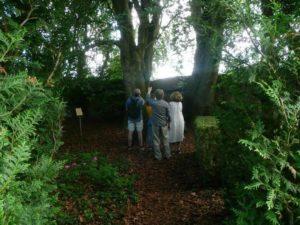 Un jardin philosophe - Fête de la nature @ Sentier Heffpfad, à 50m au-delà de la Porte Haute   Bœrsch   Grand Est   France