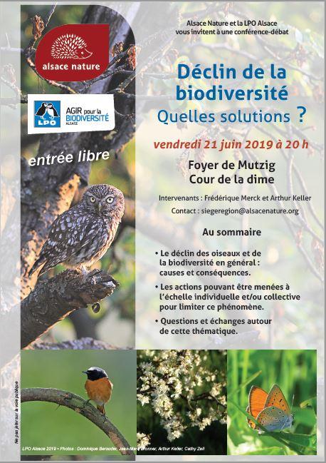 Conférence-débat :Déclin de la Biodiversité, quelles solutions ?
