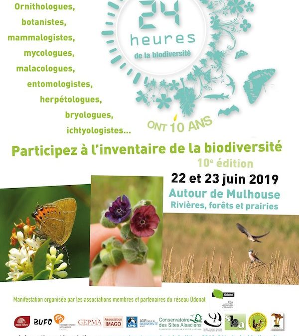 Les 22 et 23 juin : Participez aux 24H de la biodiversité !