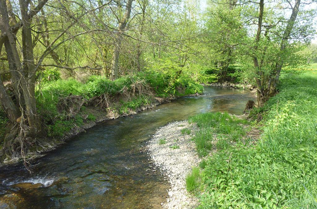 Entre la Largue, l'Ill et le canal