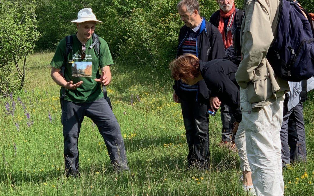 Sortie sur le Goeftberg : retour en images