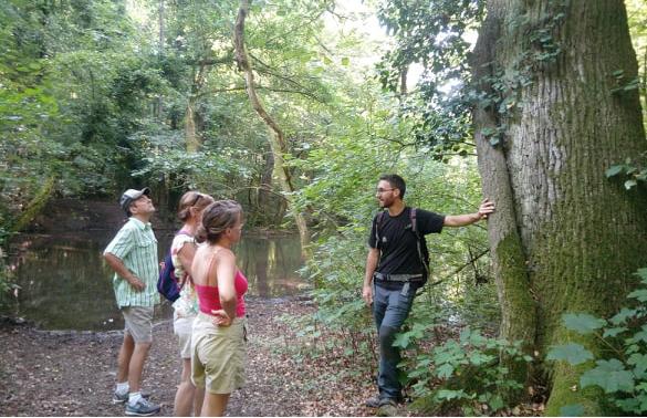 En forêt d'Illkirch-Graffenstaden en compagnie de Pierre, l'animateur d'Alsace Nature