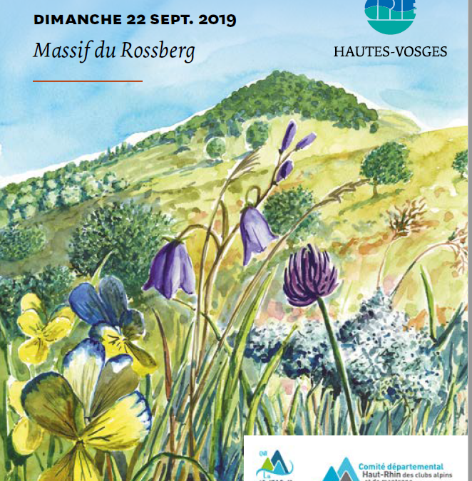 Journée de la Marche et de l'Environnement dans le massif du ROSSBERG