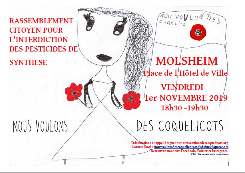 Les rassemblements  «Nous voulons des coquelicots» du 1er novembre 2019