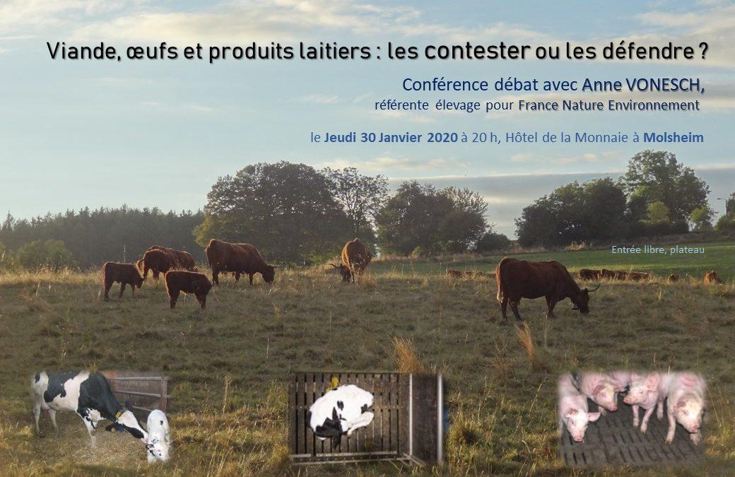 Viande, œufs et produits laitiers : les contester ou les défendre ?
