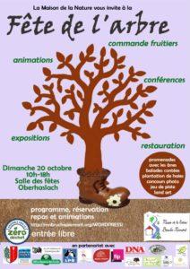 Fête de l'arbre @ salle des fêtes et autour | Oberhaslach | Grand Est | France