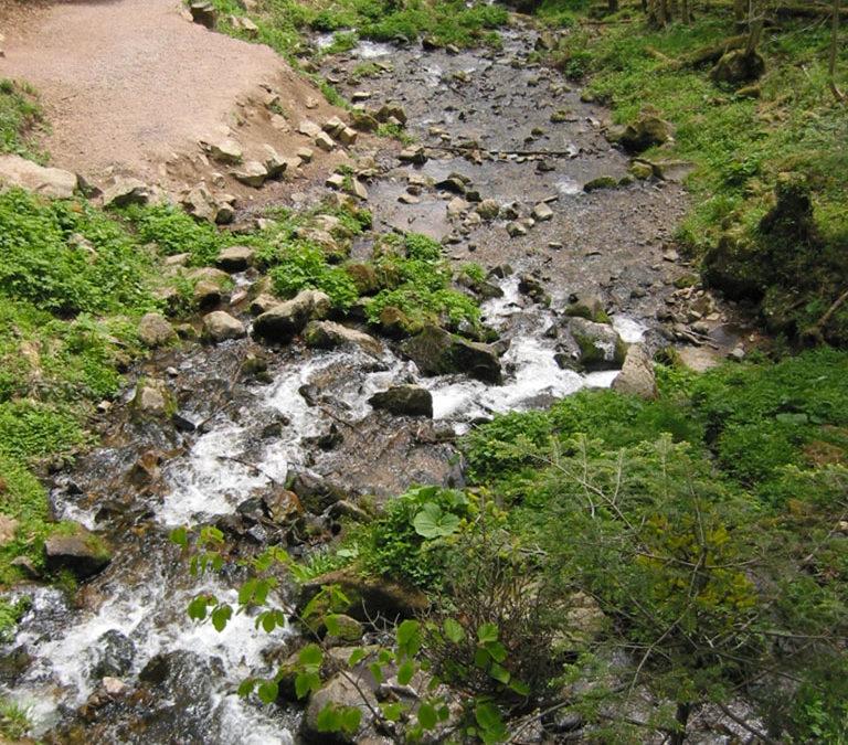 De la source de l'Andlau au fleuve