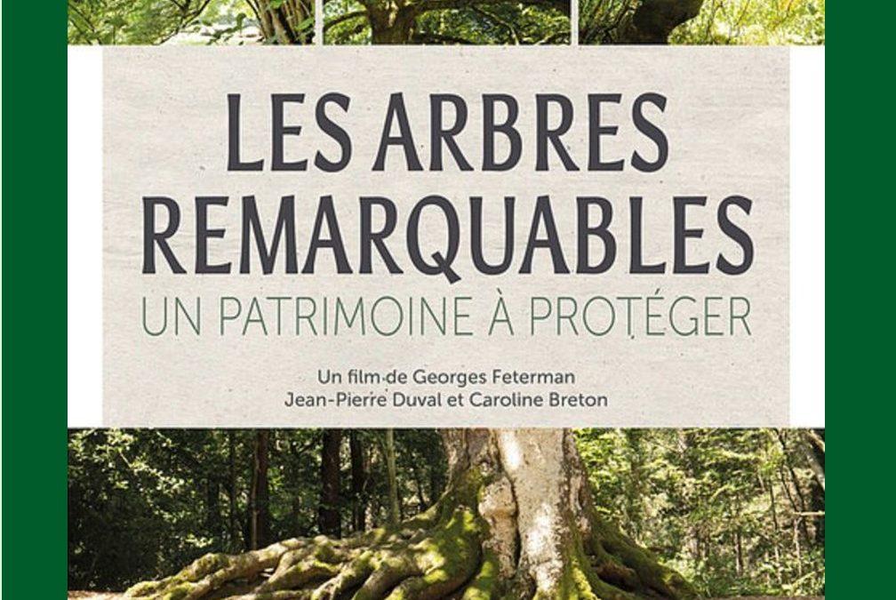 [Ciné débat] Les arbres remarquables : un patrimoine à protéger