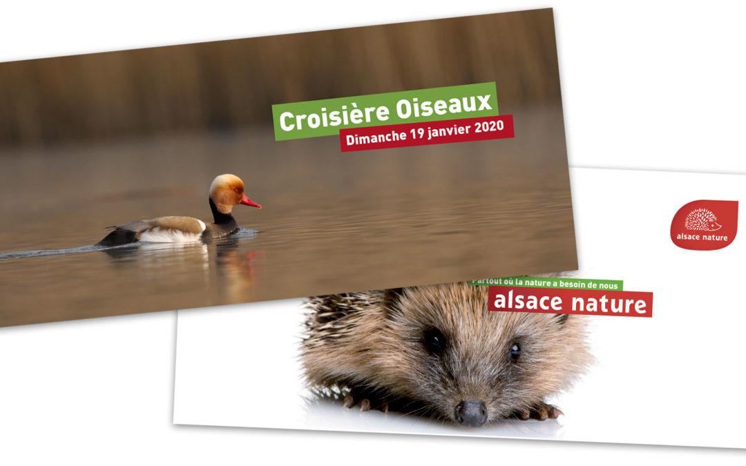 Une adhésion ou une croisière oiseaux :  offrez des cadeaux 100% nature et militants !