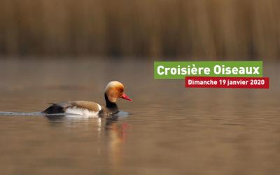 Croisière Oiseaux 2020