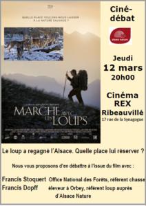 REPORTE - Ciné-débat : Le loup a regagné l'Alsace. Quelle place lui réserver ? @ Ribeauvillé - cinéma REX | Ribeauvillé | Grand Est | France