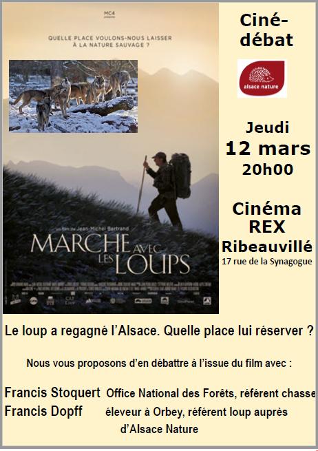 REPORTE – Ciné-débat : Le loup a regagné l'Alsace. Quelle place lui réserver ?
