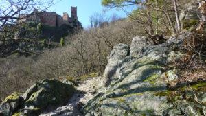 Géologie du piémont de Ribeauvillé. @ plateau sportif au haut de Ribeauvillé. | Ribeauvillé | Grand Est | France