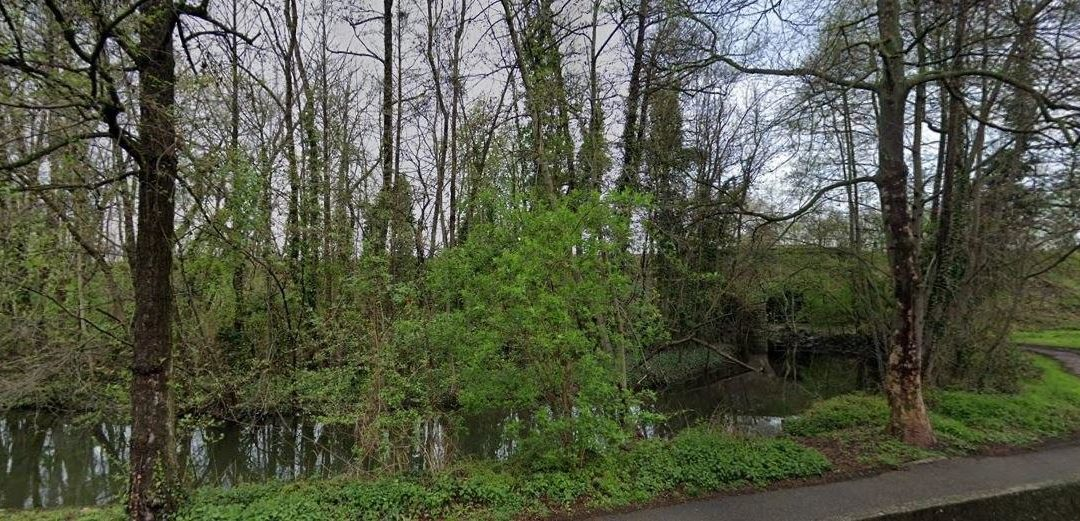EVT REPORTE -Sortie Nature du Neudorf au Neuhof