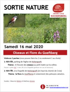 ANNULE - Oiseaux et Flore du Goeftberg @ Hohengoeft   Hohengœft   Grand Est   France