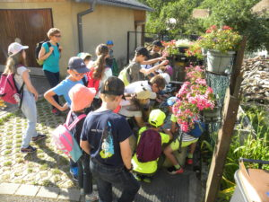 Sortie pour les enfants : « Bon voyage, petite goutte d'eau » @ Linthal | Linthal | Grand Est | France