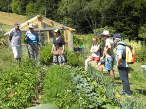 Visite d'un jardin en permaculture « Mon jardin nourricier» @ Linthal | Linthal | Grand Est | France