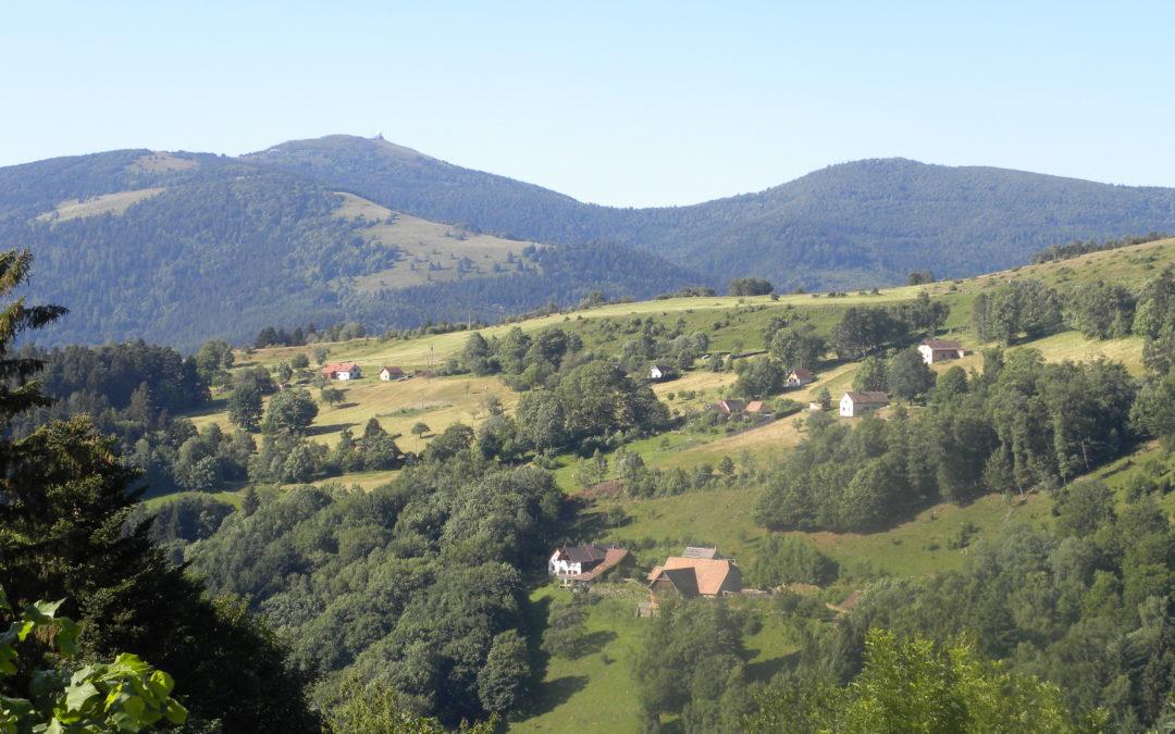 """Sortie Nature : """"Que la montagne est belle !"""""""