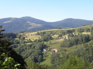 """Sortie Nature : """"Que la montagne est belle !"""" @ Crêtes vosgiennes"""